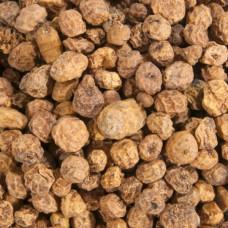 Karpfiskebutiken - Natural Tigernut 20kg