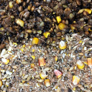 Northern Baits - Carp Particle Mix Deluxe