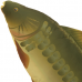 NGT- Carp Pillow